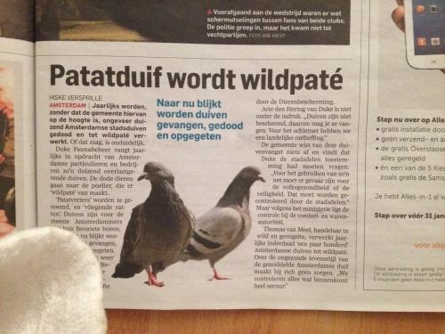 de krantenkop van vandaag. Heb je wel eens goed bekeken die manke van ongedierte vergeven duiven van de stad? Ik eet in ieder geval geen wildpaté meer.