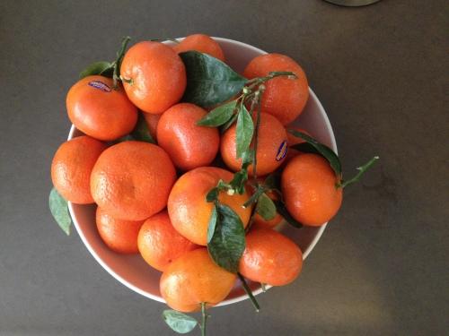 mandarijntjes, vers van de boom..
