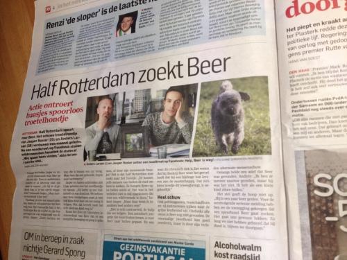 Beer is verdwenen en blijkbaar is half Rotterdam naar hem op zoek.