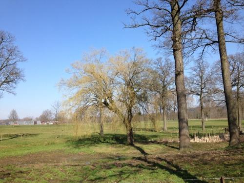 Dag mooi Limburgs landschap..