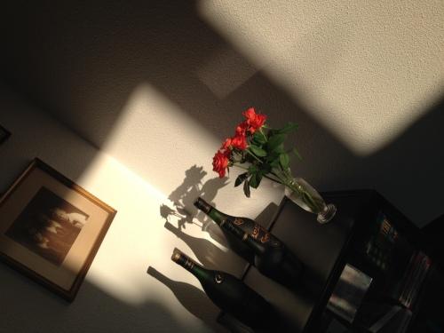 De zon die mijn favoriete hoekje laat stralen, daar word ik blij van.