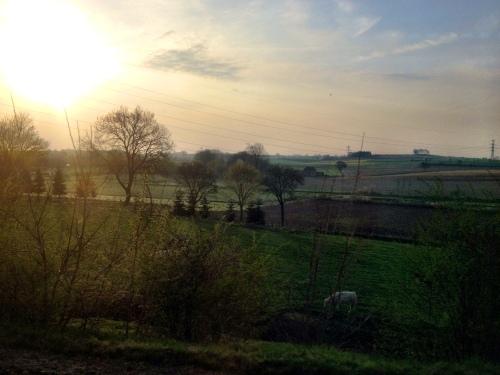 Goedemorgen Limburg! van dit uitzicht wordt een mens toch gewoon blij?