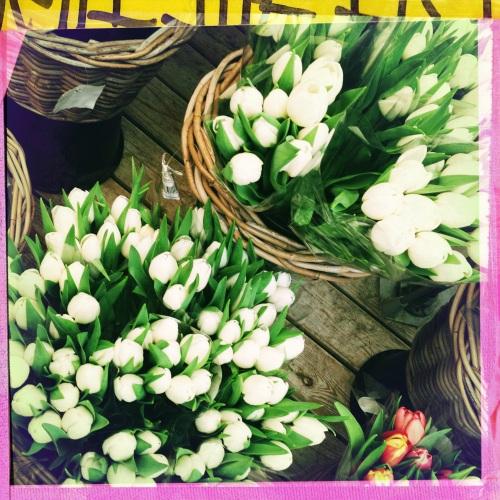 Ze hebben heel veel tulpen uit Amsterdam