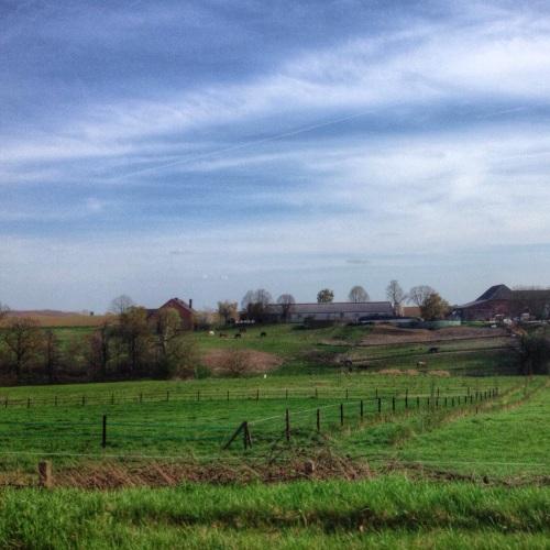 Op weg naar huis maak ik nog een foto van onze mooie omgeving en dan houd ik het voor gezien. Dag dag, tot morgen!