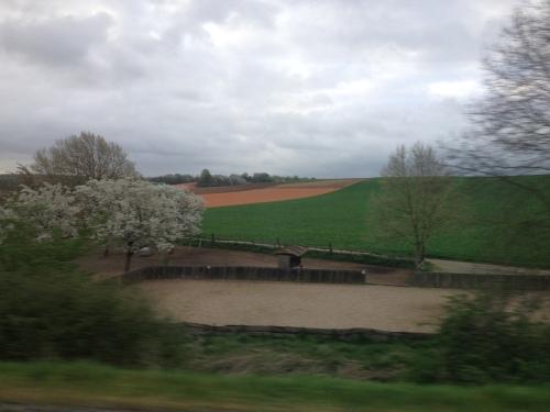 Iemand enig idee waarom deze velden zo´n rare kleur hebben?