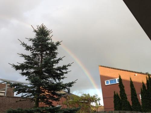 Om de dag mee af te sluiten, een regenboog. Dag dag, tot morgen.