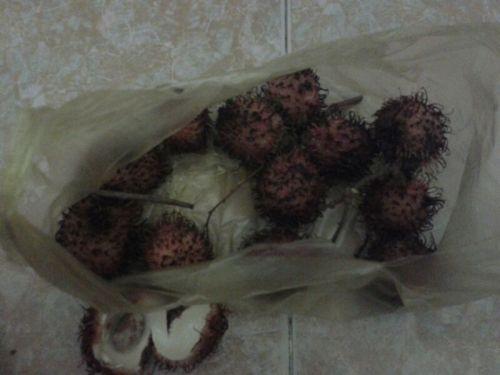 Appje uit Vietnam, het kind is gelukkig met vers fruit
