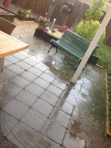 Een wolkbreuk die een klein zwembad in onze tuin laat ontstaan.