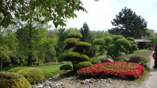 De Japanse tuinen..