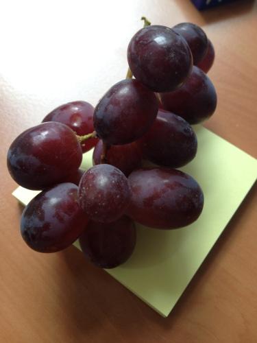 De druiven zijn een beetje zuur vandaag.