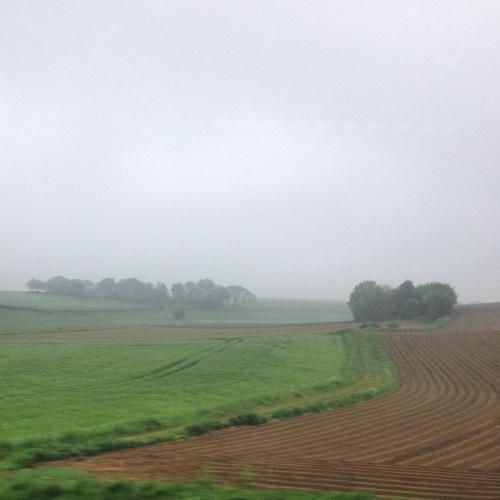 Goedemorgen Limburg.