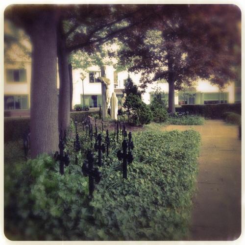 Hier was vroeger de kloostertuin. De bomen en  het oude kerkhof zijn nu het hart van een prachtig stukje Kerkrade