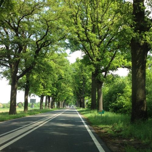 De weg is lang.