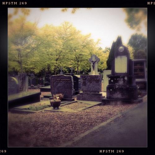 Vaste prik op zaterdag een bezoek aan het graf van mijn ouders.