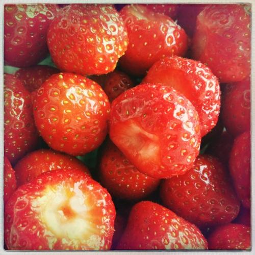 Aardbeien vers van de boer...zo zoet dat je geen suiker nodig hebt.