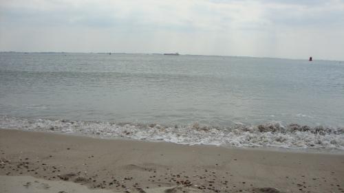 Dag zee. het was kort maar wel heel leuk!