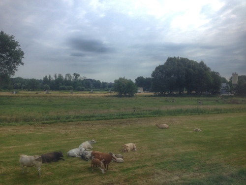 Het leven is goed in ons Limburgse land.