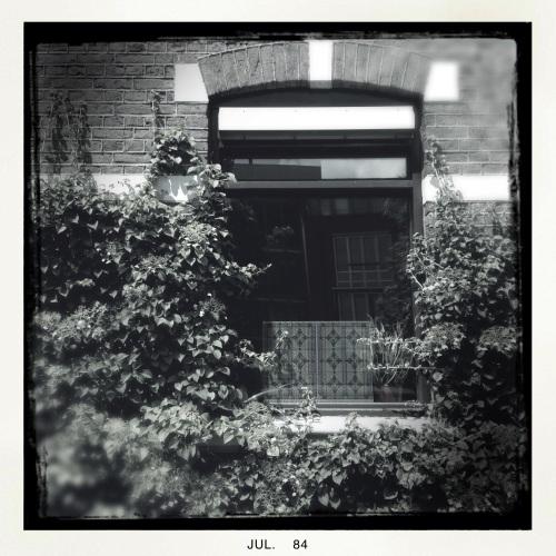 Stilstaan betekent ook om je heen kijken en mooie dingen zien. Dit raam omgeven door groen bijvoorbeeld.