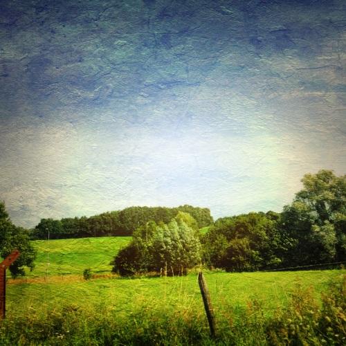 Groene weiden en blauwe lucht, het Limburgse land op zijn mooist