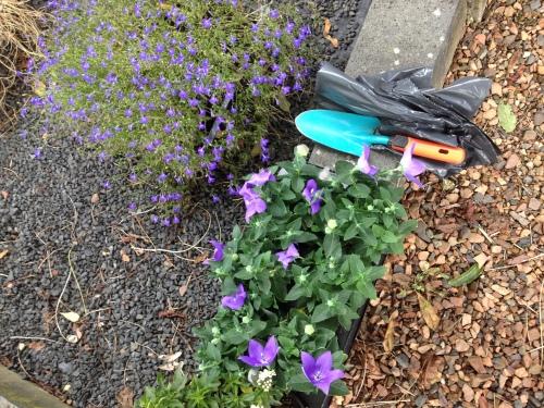 Planten vervangen op het kerkhof